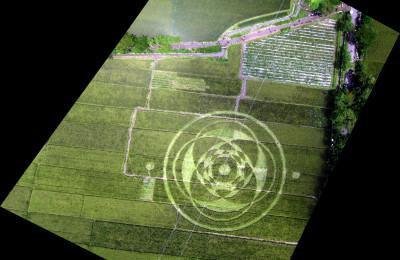 Crop Circle Indonesia