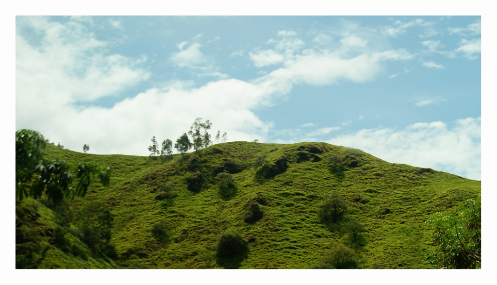 Timor Leste hills