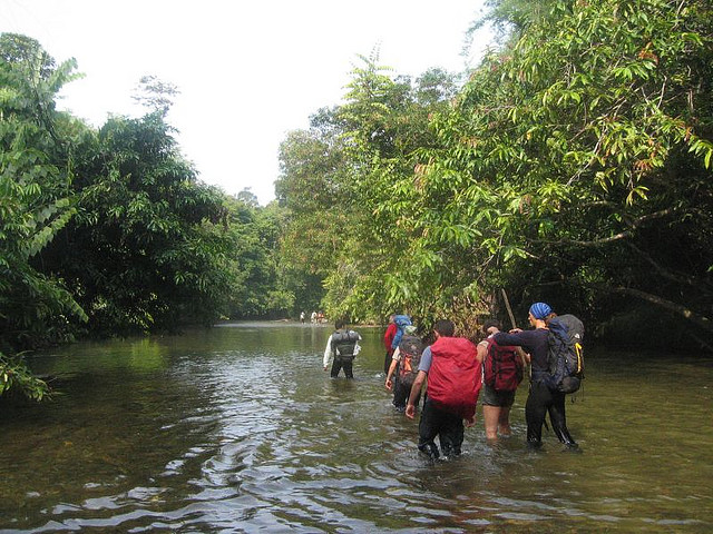 Trekking in West Kalimantan, By: Franco Pecchio