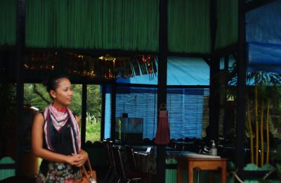 Bambu Kuning Kupang