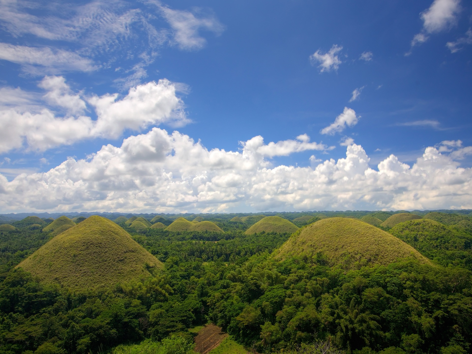 Chocolate Hills in the Bohol Province, a rare landscape that became one of Phillipines' Geological Monuments