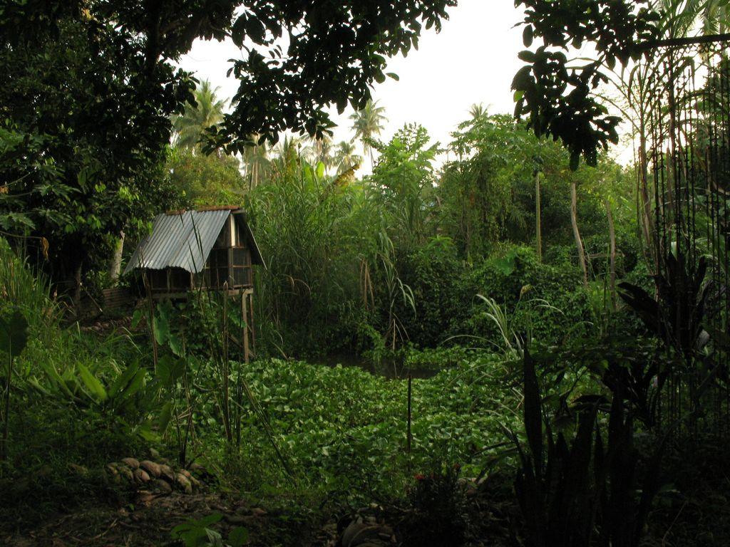 Embun Pagi Farm in Malaysia, By: Mezza Mela