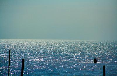 Port Dickson seaview, By: Sham Hardy