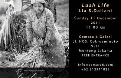 lush life photo exhibition S Daliani