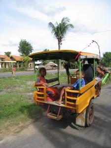 Children in a cidomo