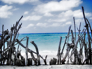 The north beach of Gili Trawangan, By: Riza Nugraha