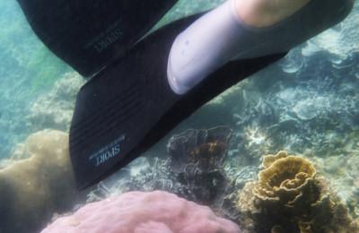 Snorkeling at Pari island