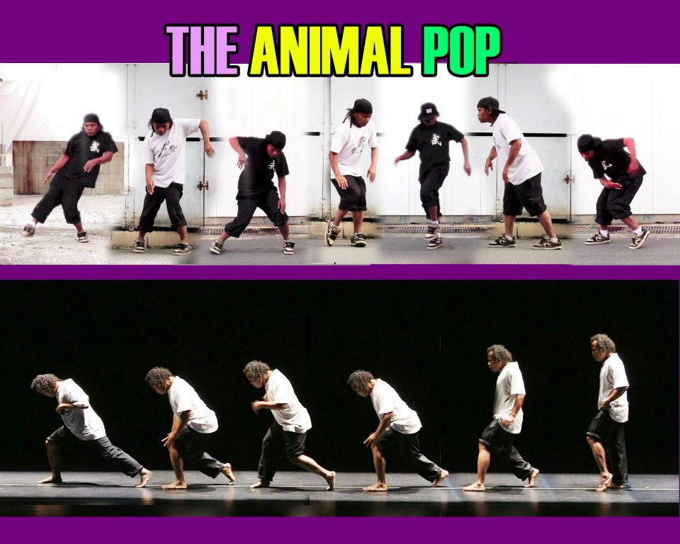Jecko Siompo calls his approach 'The Animal Pop'