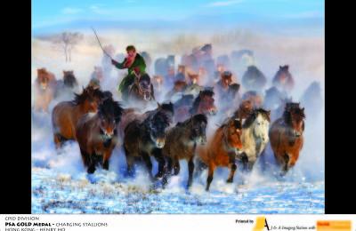 Henry Ho (HK) Charging Stallions
