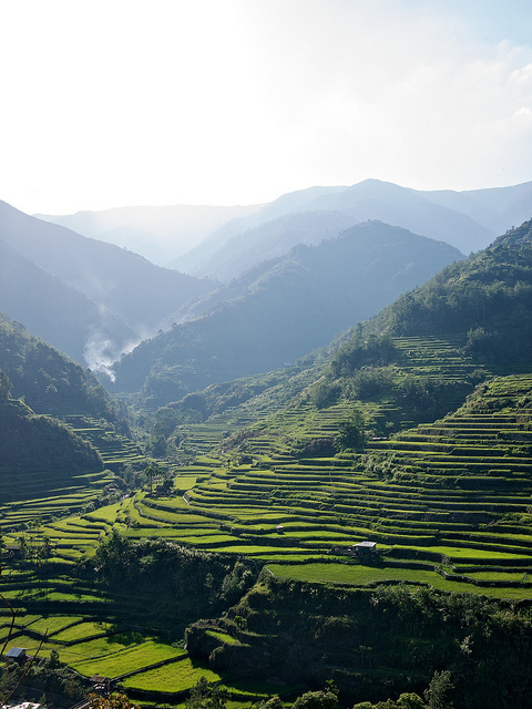 Happao rice terraces, By: Miguel Castaneda