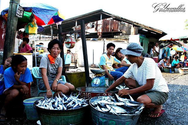 Danao City fish market in Cebu, By: Gerald Yuvallos