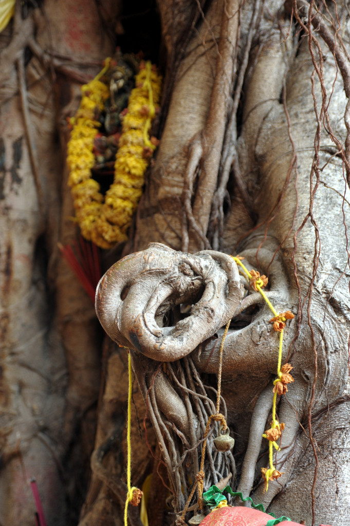 The Ganesha trunk, By: Diana van Oort