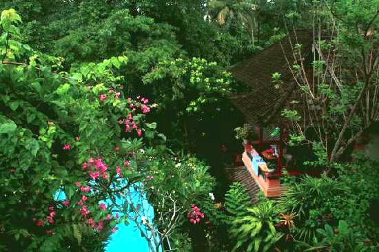 Jungle pool at Kajeng Bungalows Ubud