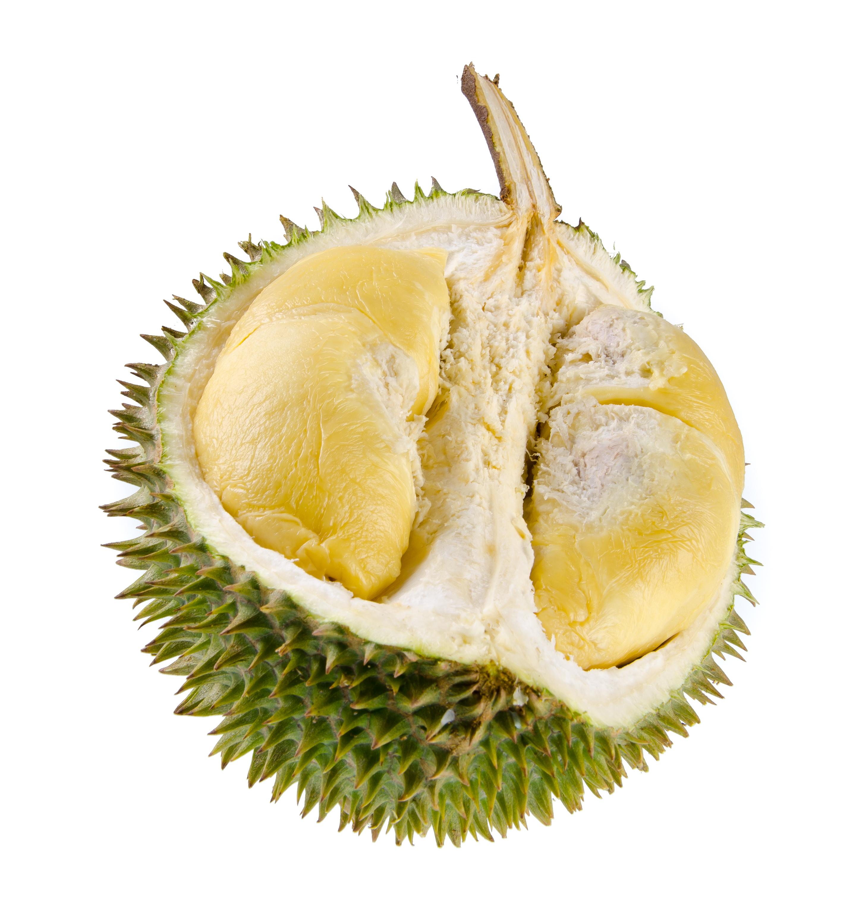 the dizzying durian latitudes. Black Bedroom Furniture Sets. Home Design Ideas